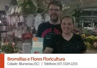 Bromelias e Flores Floricultura